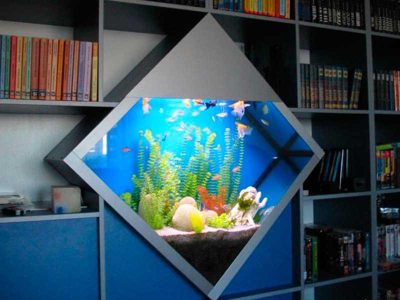 aquarium v interere